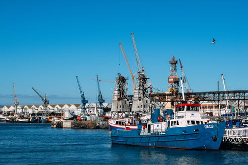 Industrial dock with contemporary cranes and moored cargo vessels in blue water in sunlight