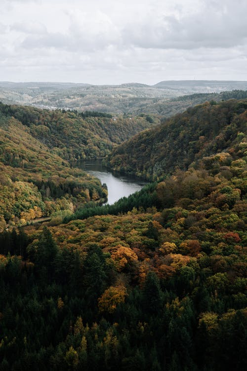 Peaceful river flowing in valley of highlands covered with dense woods under cloudy sky