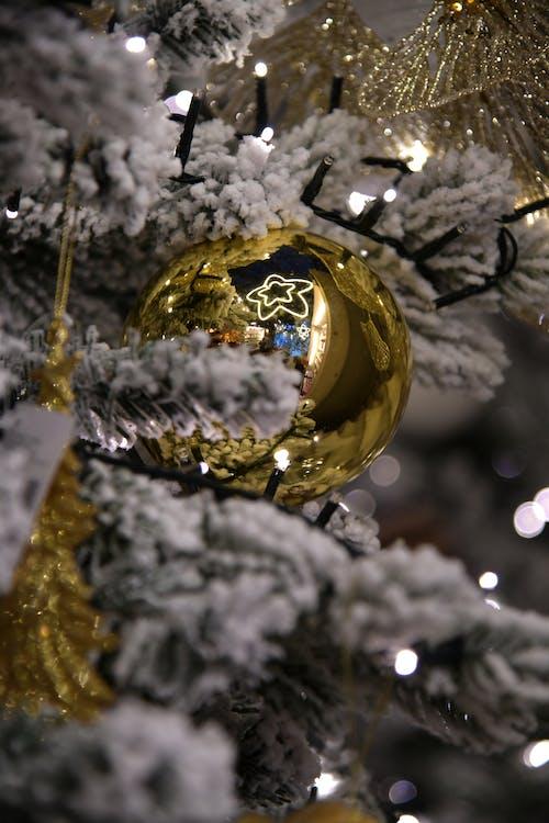 Immagine gratuita di decorazioni natalizie, luci di natale, pallina d oro