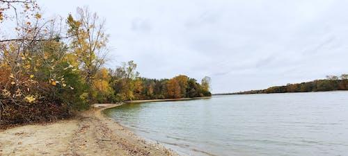 Free stock photo of autumn lake, water level
