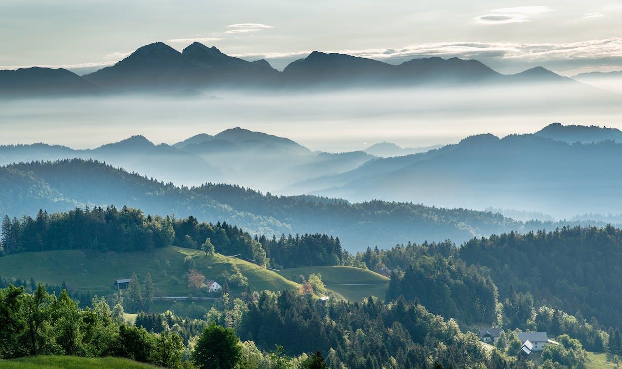 Bergachtige Vallei Met Altijdgroen Bos Tegen Mistige Hemel