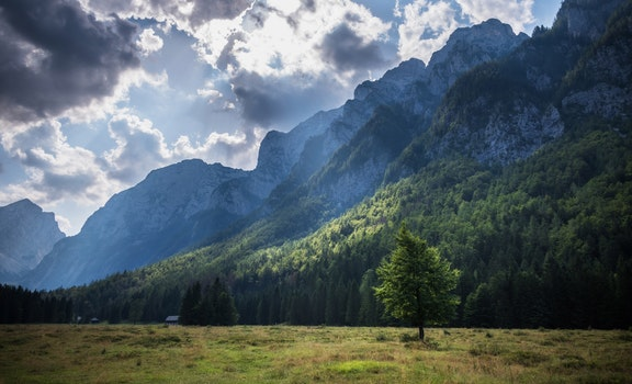 Kostenloses Stock Foto zu klima, straße, landschaft, natur