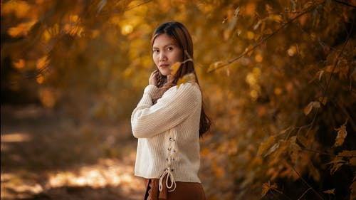 Gratis stockfoto met blad, boom, buiten