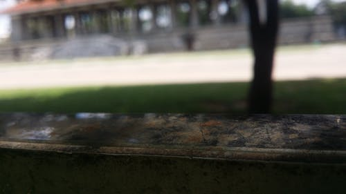 Kostnadsfri bild av oskärpa