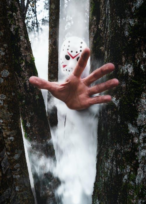 Бесплатное стоковое фото с белый, деревья, дым, кино