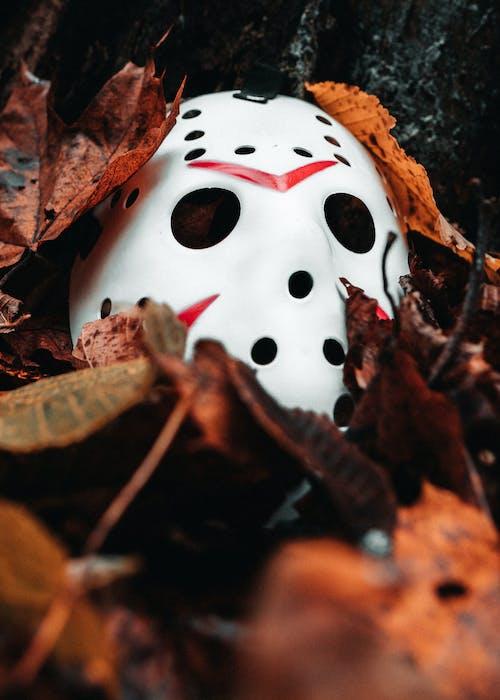 Бесплатное стоковое фото с листья, маска, молотый, осенние листья