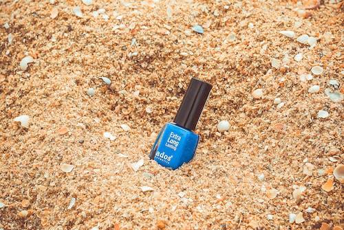 Δωρεάν στοκ φωτογραφιών με αλέθω, άμμος, βερνίκι, κοχύλια
