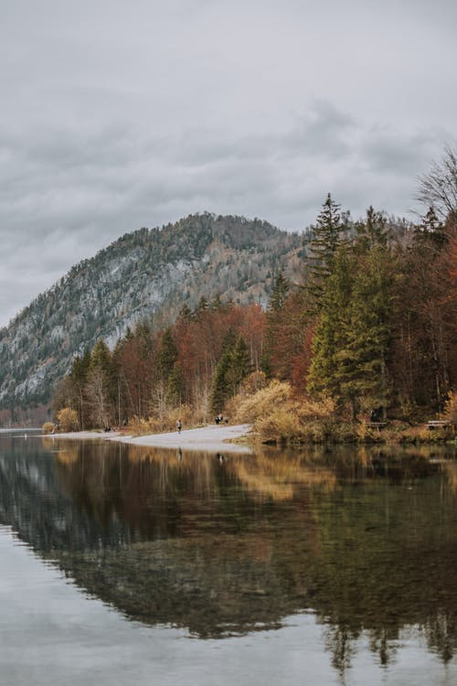Picturesque view of peaceful pond with coniferous forest on shore in autumn highland