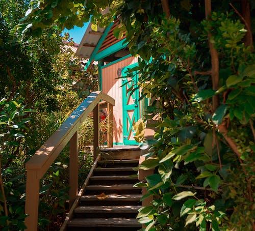 Imagine de stoc gratuită din arbori, bungalou, bungalouri