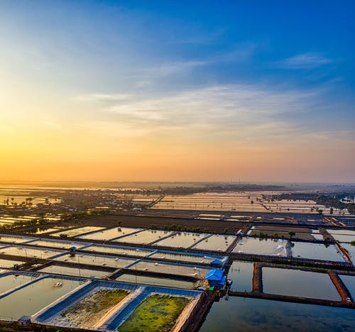 Fish farm with ponds under colorful sky at sunset