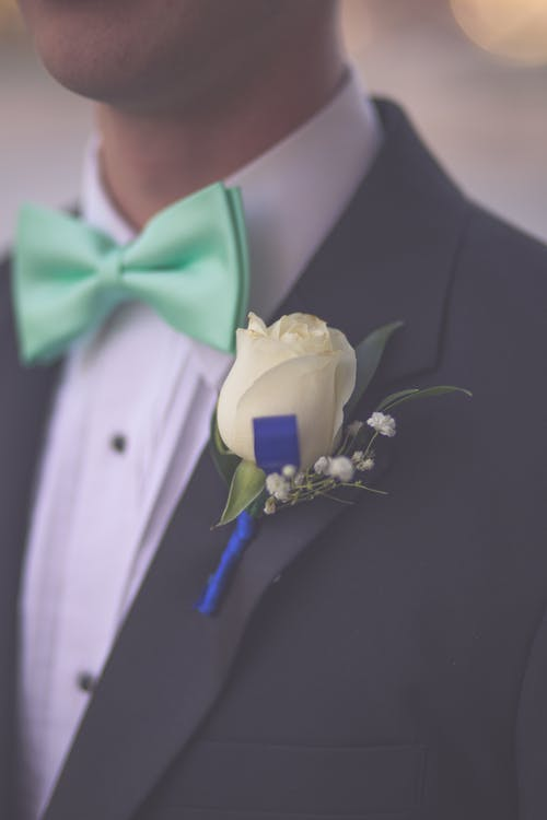 Free stock photo of bowtie, flower, groom