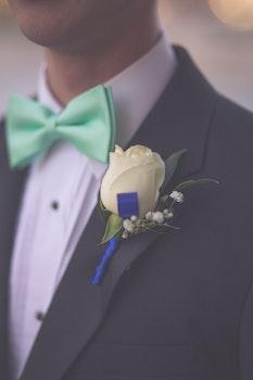 Free stock photo of flower, wedding, groom, bowtie