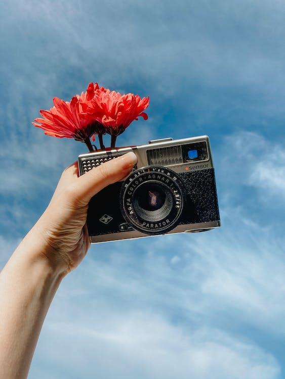 Donna Che Mostra Fotocamera Retrò E Azienda Fiore In Fiore