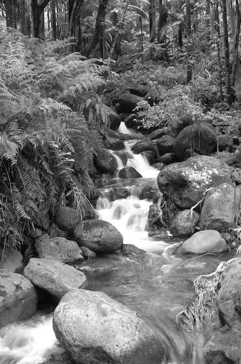 Foto profissional grátis de cachoeira, cascata