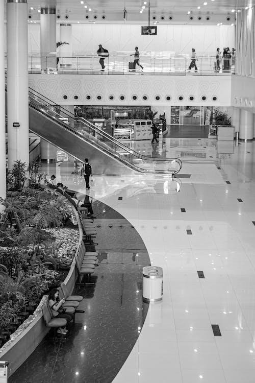 Photos gratuites de à l'intérieur, activités, aéroport