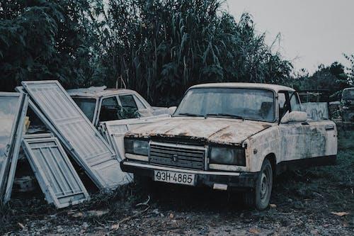 Ingyenes stockfotó autó, békés, bokor, cél témában