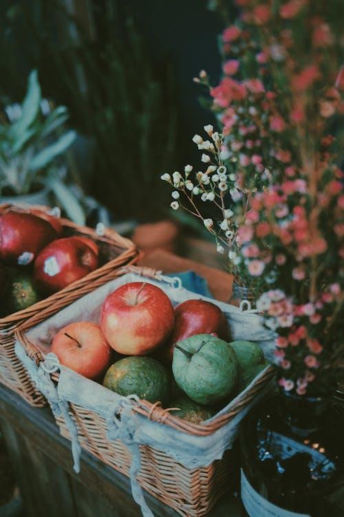 Fotos de stock gratuitas de abundancia, afuera, aire libre