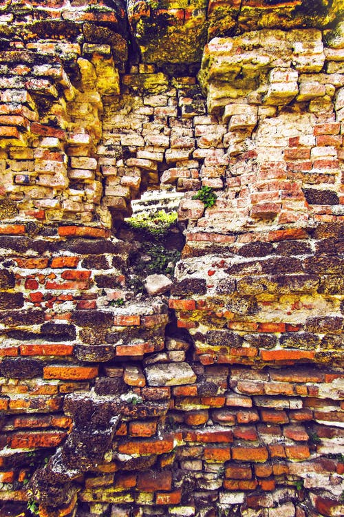 Foto stok gratis bata, dinding, dinding oranye, permukaan