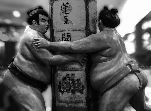Δωρεάν στοκ φωτογραφιών με sumo, βαρύς, Ιαπωνία, σκοτάδι