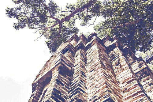 Δωρεάν στοκ φωτογραφιών με αρχαίος, αρχιτεκτονική, δέντρο, κτήριο