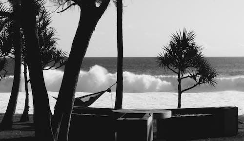 Free stock photo of big waves, blackandwhite, calm day
