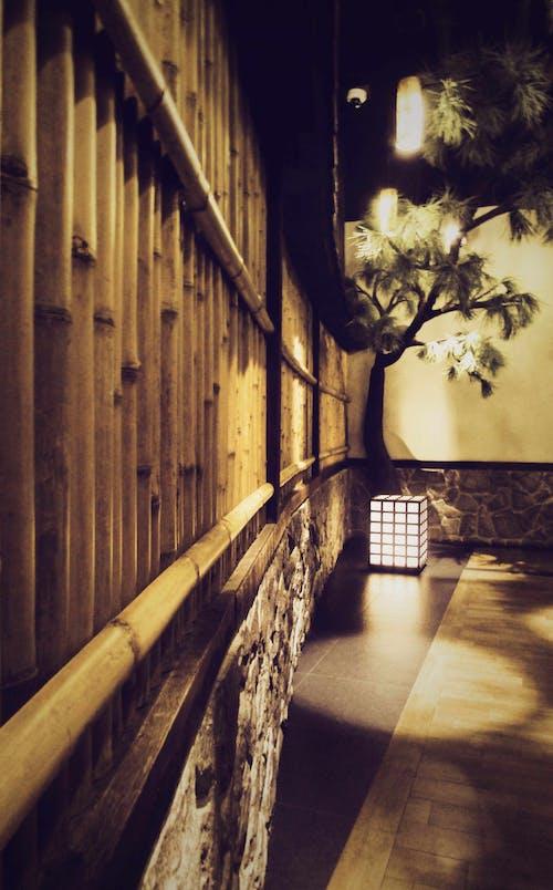 คลังภาพถ่ายฟรี ของ กลางคืน, ชาวญี่ปุ่น, แบบดั้งเดิม, โคมไฟ