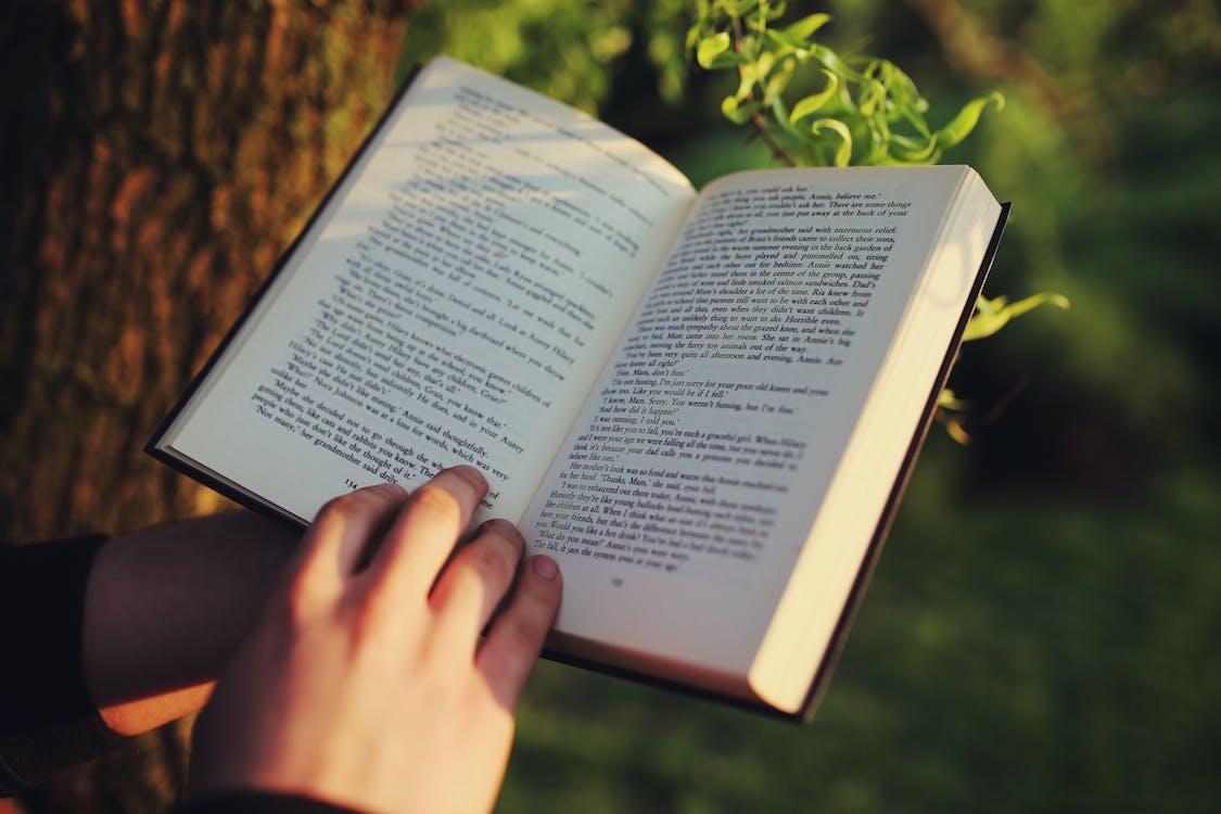 література, навчання, роман