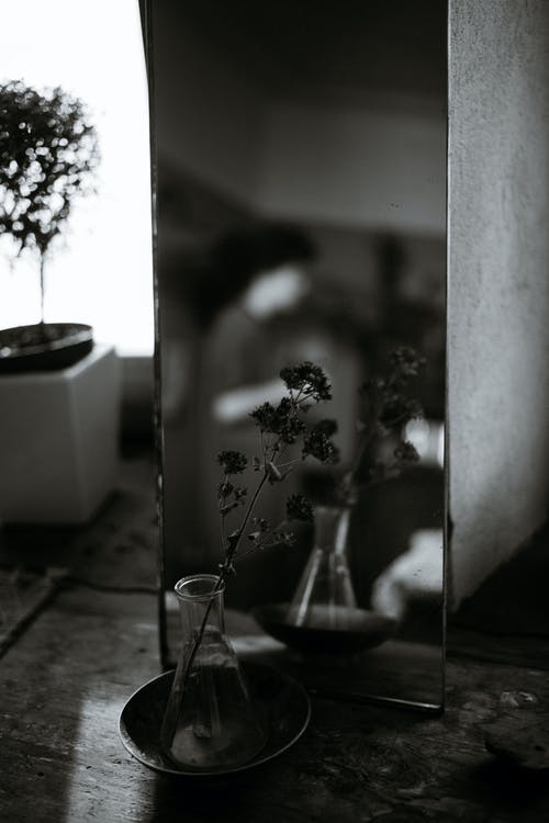 Vase with flowers reflecting in mirror in house