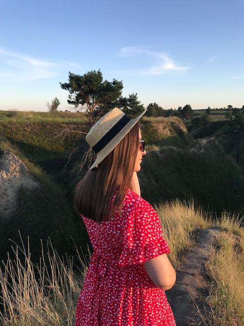 乾草地, 乾草田, 休閒, 兒童 的 免费素材图片