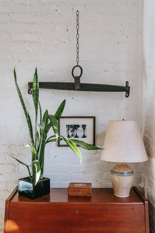 Wooden cabinet with lamp and houseplant