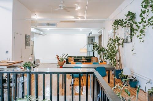 Comedor Conectado Con Zona Lounge Y Decorado Con Plantas De Interior
