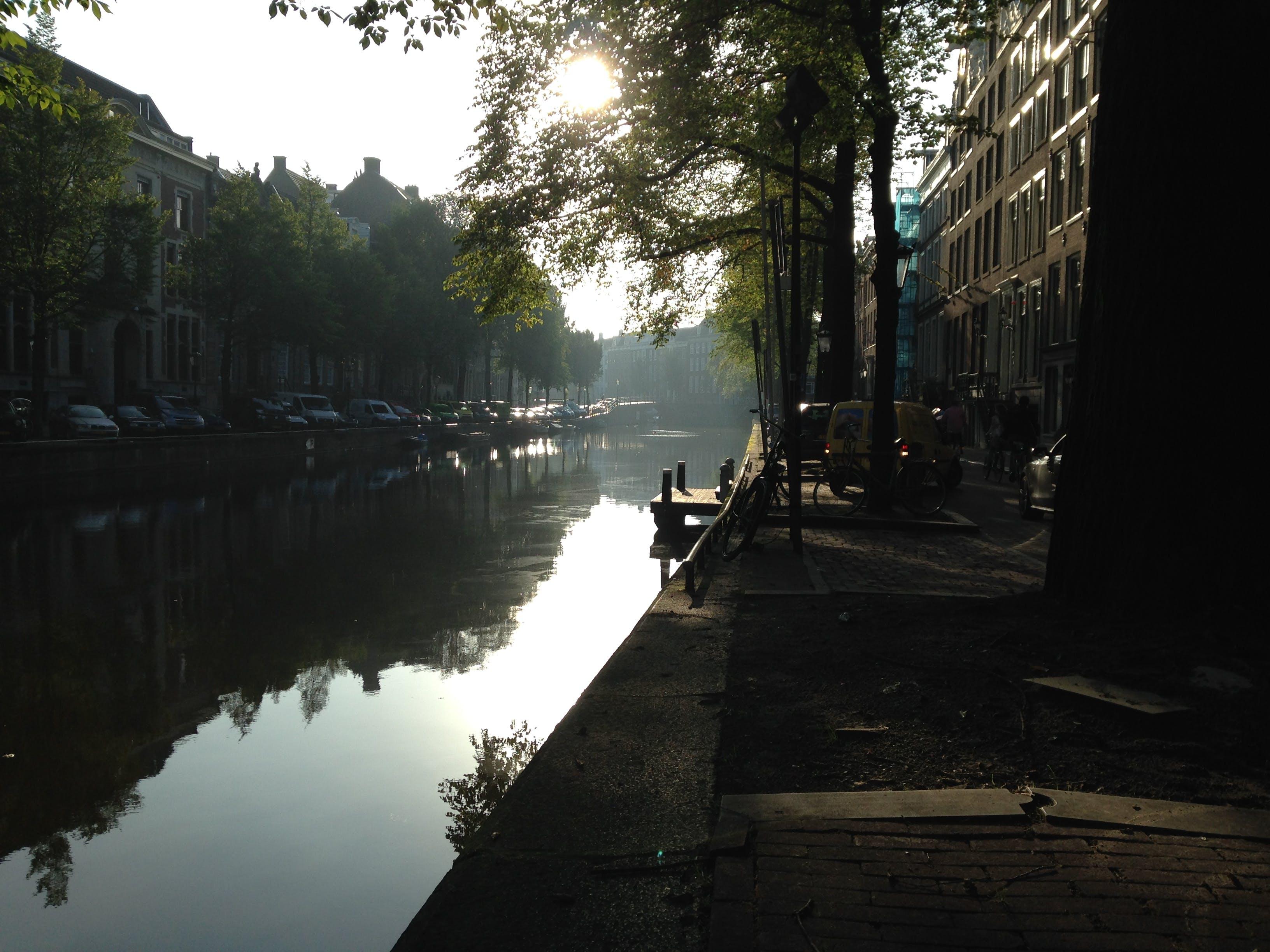 Free stock photo of 2015, amsterdam