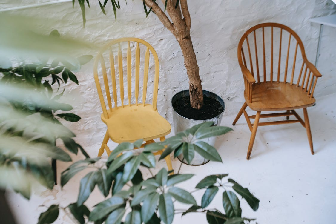 High angle comfy wooden chairs placed against white stone wall near large potted plant