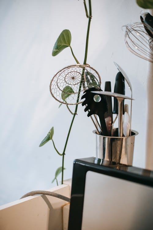 Collection of kitchenware in shiny metal glass near creeping plant and white wall in kitchen