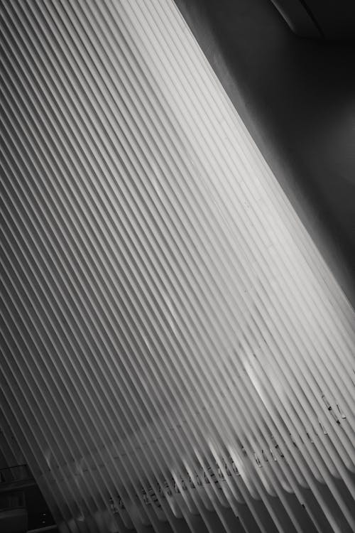 Black and white of glowing roof with straight thin beams in row in modern building