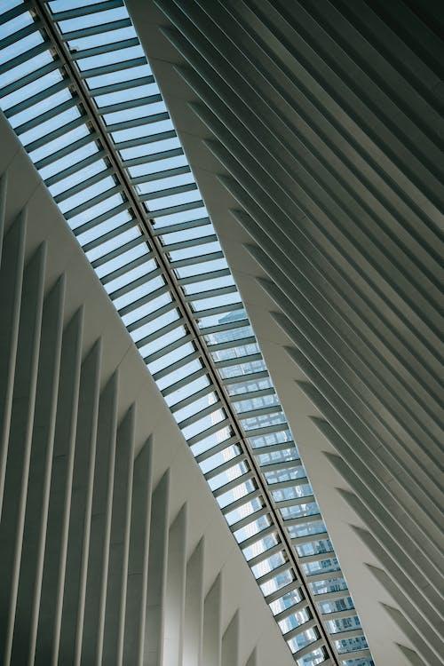 Techo De Edificio Contemporáneo Con Vigas Nervadas Durante El Día