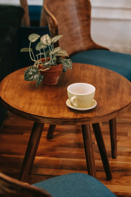 From above of stylish wooden chairs with blue seats located near small round table with potted plant and white ceramic cup in cozy cafe