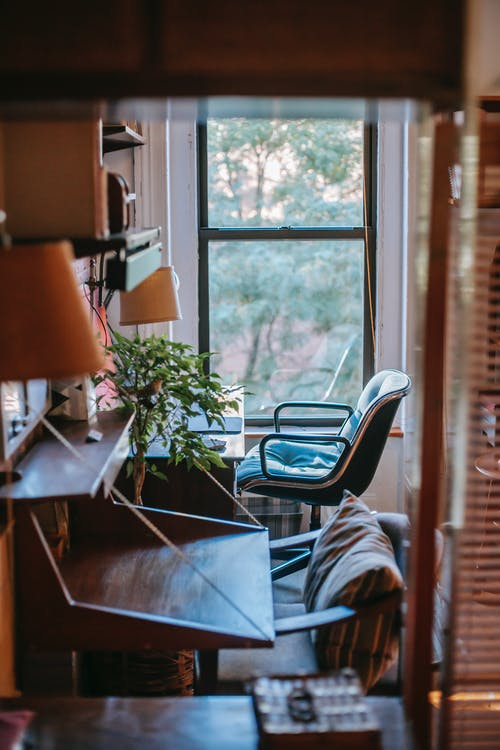 Comfortable working zone decorated with houseplants in cozy apartment