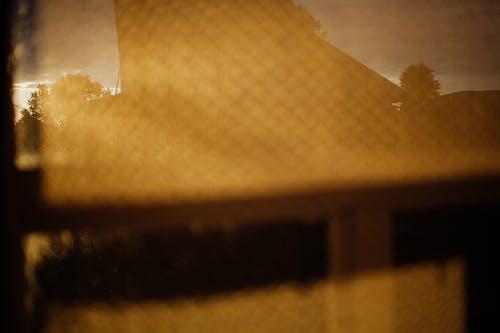 Бесплатное стоковое фото с абстрактный, бумага, дерево, золотистый