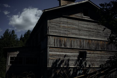 Exterior of shabby wooden building located near tall green trees under blue cloudy sky in summer day in nature