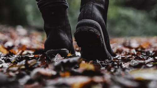 Person Wearing Boots Standing on Dry Leaves