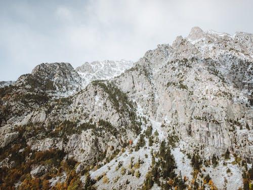 Gratis lagerfoto af bjerg, forkølelse, høj