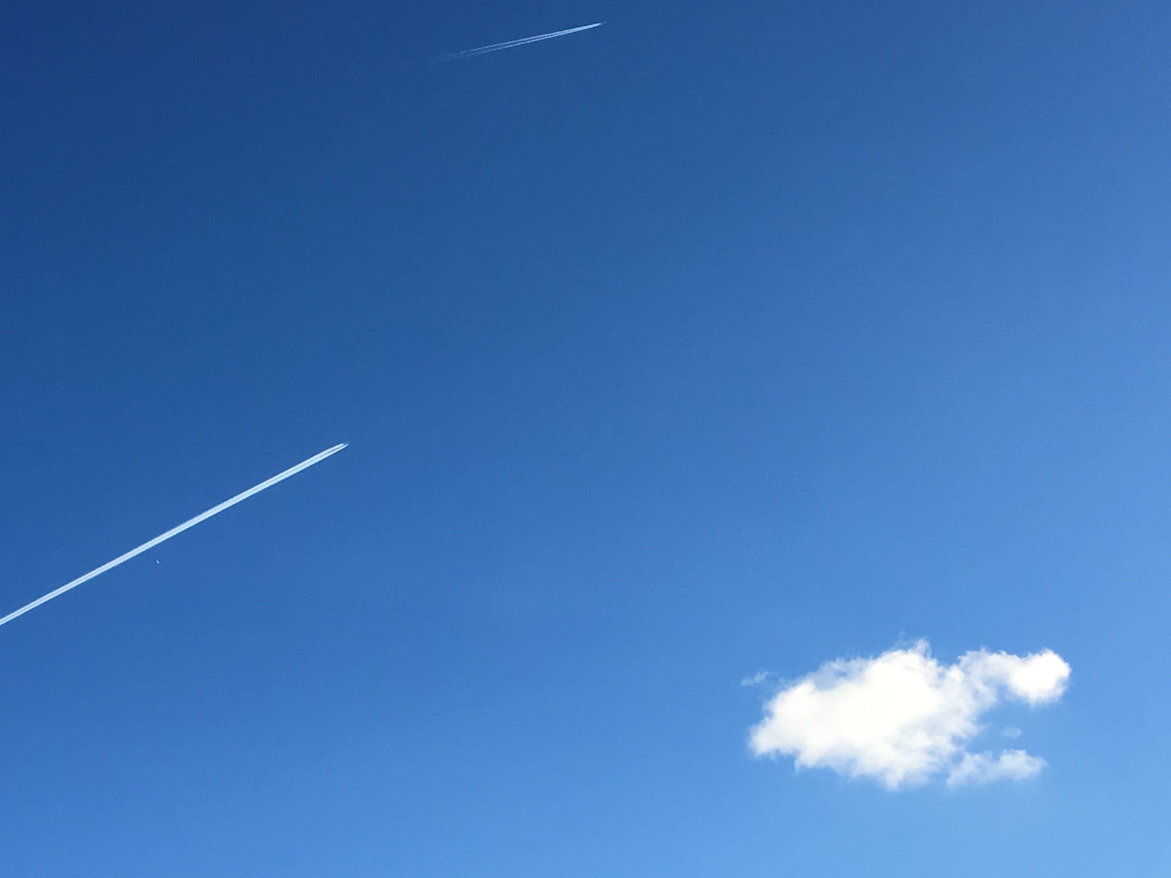 Ảnh lưu trữ miễn phí về ánh sáng ban ngày, bầu trời, bay, cao
