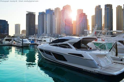 Free stock photo of dubai charter, dubai marina, yacht