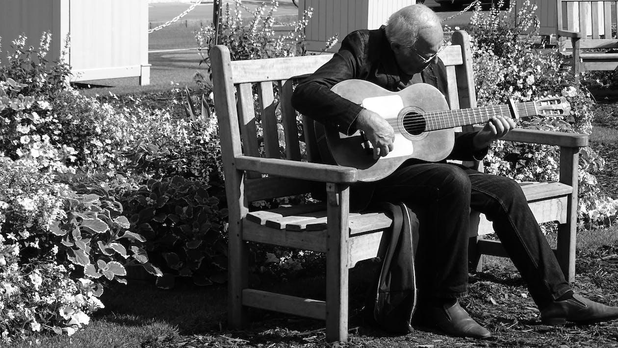 gitarr, gitarrist, instrument
