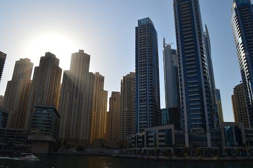 Free stock photo of duba marina buildings