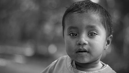 Kostnadsfri bild av ansikte, ansiktsuttryck, asiatisk, asiatiska människor