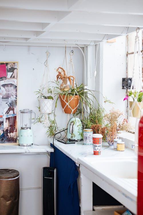 Immagine gratuita di appartamento, architettura, armadietto