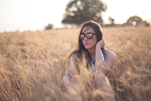 Foto d'estoc gratuïta de arbres, camp, camp de blat, dona