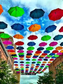 Free stock photo of umbrellas, rainbow colors